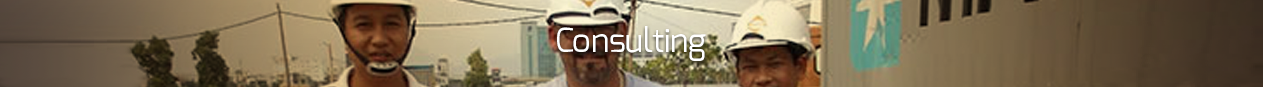 consulting_text